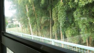 深大寺へバスで1